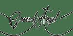 logo Breizh Angel